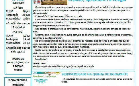 "Jornal: ""A Chaminé"" 3º Período de 2018/19"
